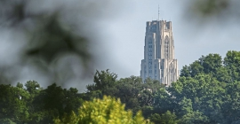 Cathedral of Learning in the trees